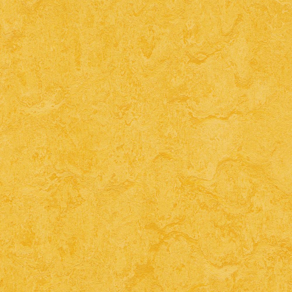 Linoleumgolv Forbo Marmoleum Click Lemon Zest 30x30 cm