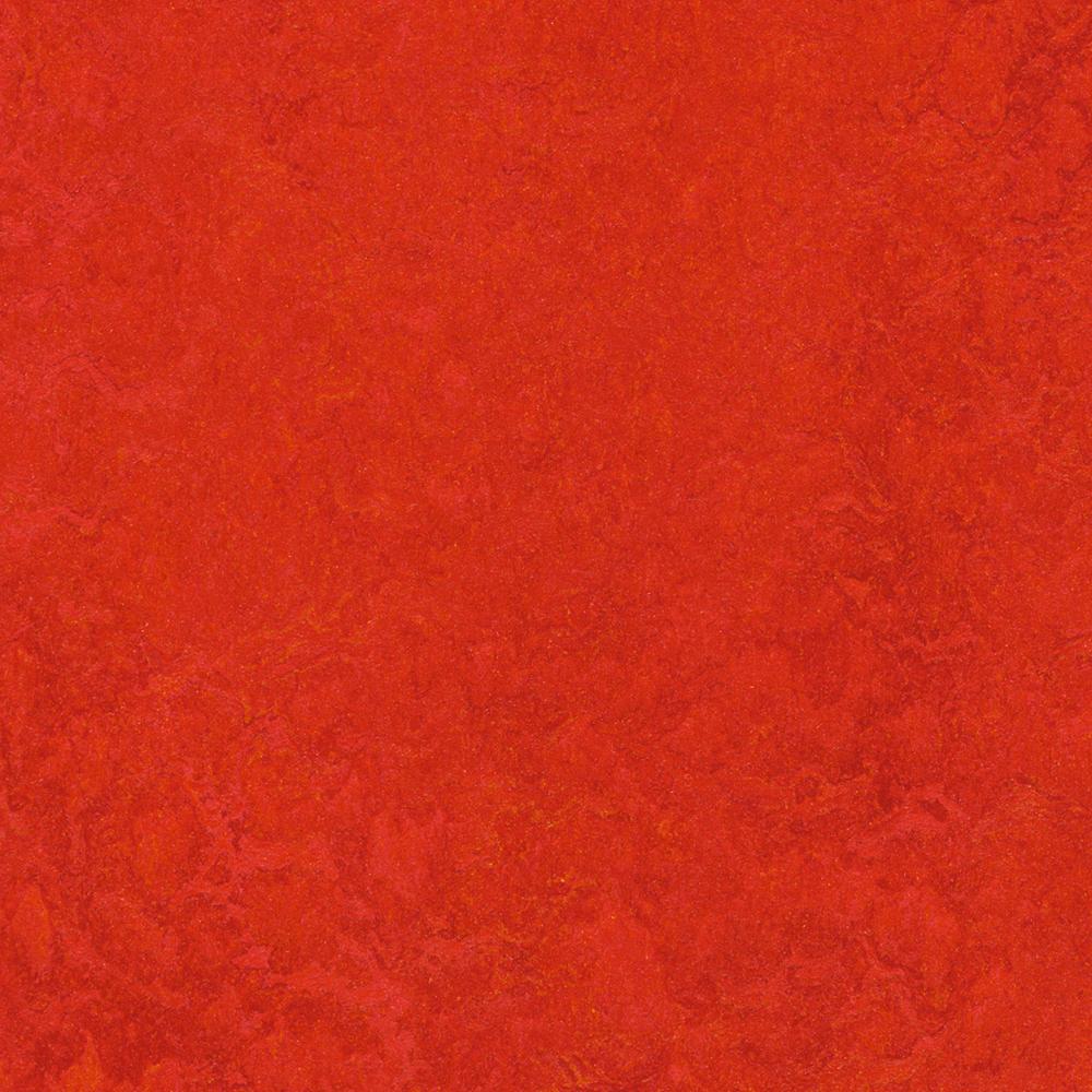 Linoleumgolv Forbo Marmoleum Click Scarlet 30x30 cm