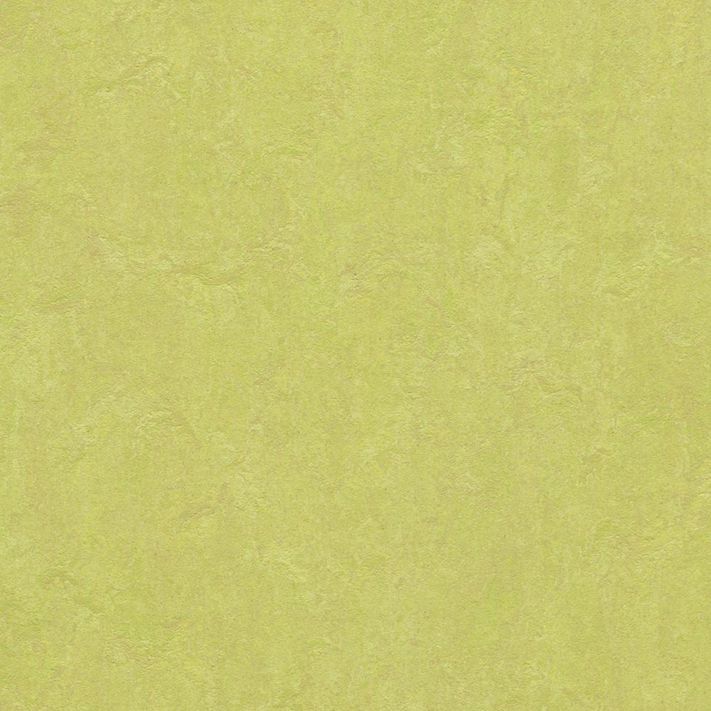 Linoleumgolv Forbo Marmoleum Click Spring Buds 30x30 cm