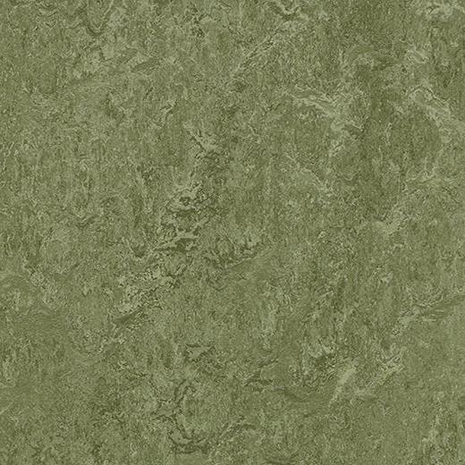 Linoleumgolv Forbo Marmoleum Modular Colour Pine Forest